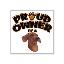 "Proud Owner of a Dachshund Square Sticker 3"" x 3"""