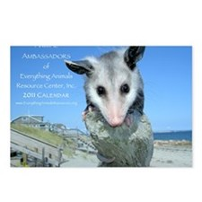 Everything Animals calend Postcards (Package of 8)