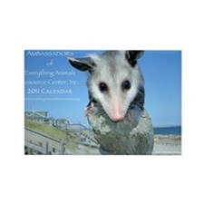 Everything Animals calendar cover Rectangle Magnet