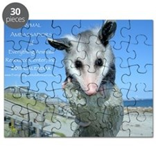 Everything Animals calendar cover Puzzle
