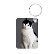 clifford journal Aluminum Photo Keychain