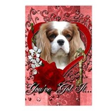 Valentine_Red_Rose_Cavali Postcards (Package of 8)