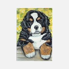 Berner fence pup Rectangle Magnet