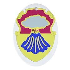 DUI - 67th Armor Regiment Oval Ornament