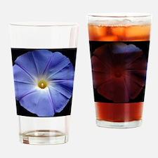 Blue Morning Glory Tile Drinking Glass