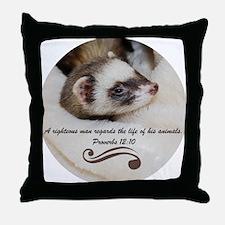DSC_3911-1 Throw Pillow