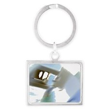Picture 108 Inv Landscape Keychain