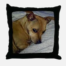 dora2JPEG Throw Pillow