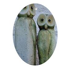 OwlsWaterBottle1.0 Oval Ornament