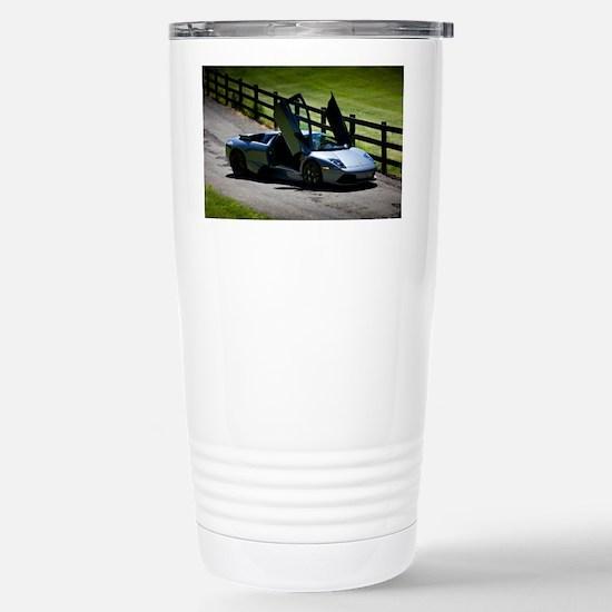 IMG_4023 copy Stainless Steel Travel Mug