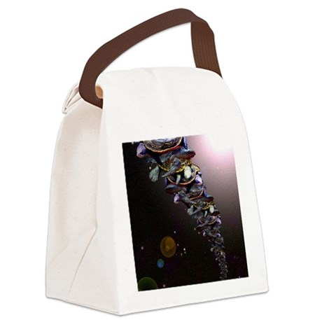 Turtles All The Way Down Canvas Lunch Bag