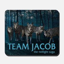 240T Team Jacob Mousepad