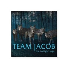 "240T Team Jacob Square Sticker 3"" x 3"""