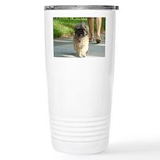 DSC09586 Travel Coffee Mug