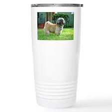 DSC09590 Travel Mug
