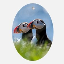 Puffin Pair 7.355x9.45 Oval Ornament