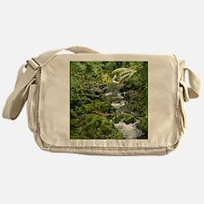 2-hana_stream_TC Messenger Bag