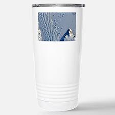 matusevich_ali_small Stainless Steel Travel Mug
