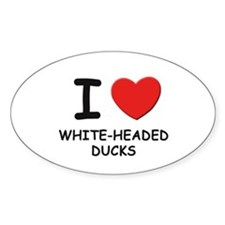 I love white-headed ducks Oval Decal
