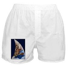 AnimaLux Boxer Shorts