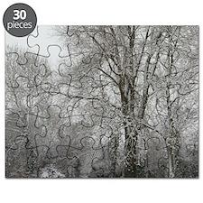 2-IMGP5725_5x5 Puzzle
