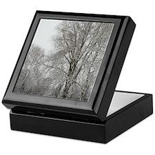 IMGP5725_8x10 Keepsake Box