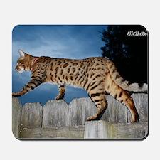 Oversize Cal 05-11 Mousepad