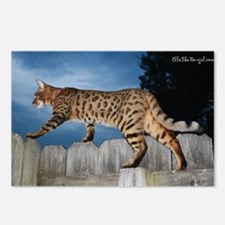 Oversize Cal 05-11 Postcards (Package of 8)