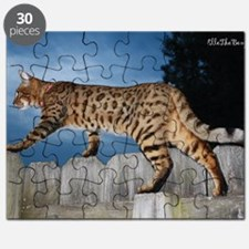 Oversize Cal 05-11 Puzzle