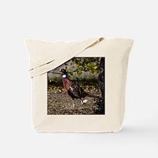 (15) Pheasant  497 Tote Bag
