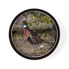 (15) Pheasant  497 Wall Clock