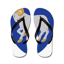 Faroe_Islands Flip Flops
