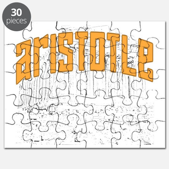 Aristotle Dark Puzzle