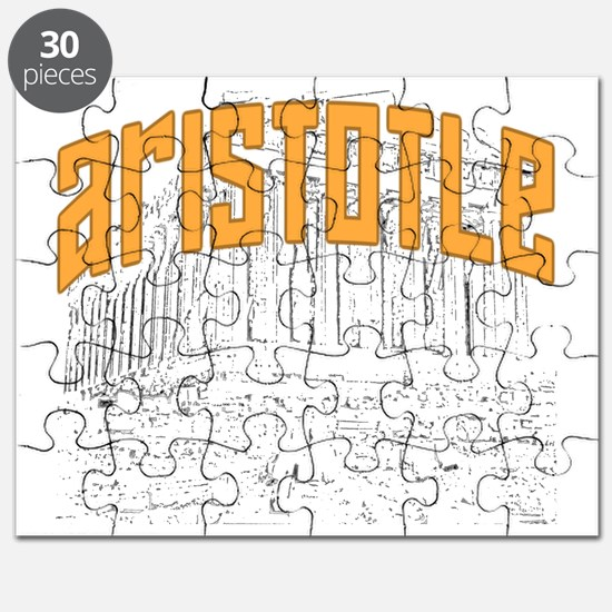 Aristotle Light Puzzle