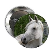 "amira_face-circle2 copy 2.25"" Button"