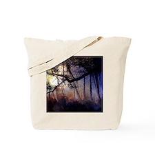 myakah-river-11 Tote Bag