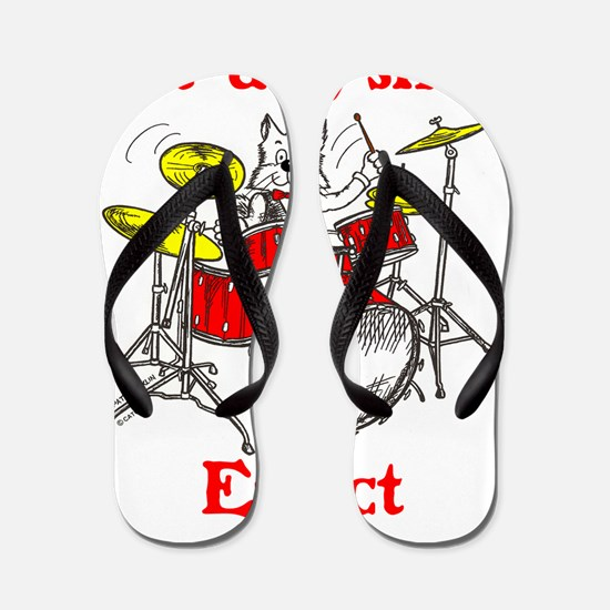 CAT-ACLYSMIC EFFECT Flip Flops