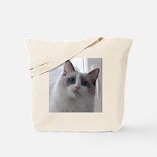 DSC_0939 Tote Bag
