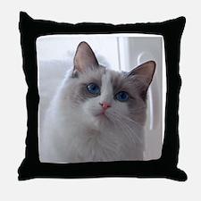 DSC_0939 Throw Pillow
