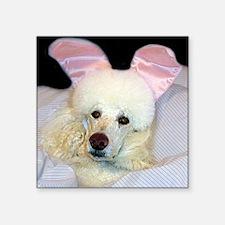 "Bedroom Poodle Square Sticker 3"" x 3"""