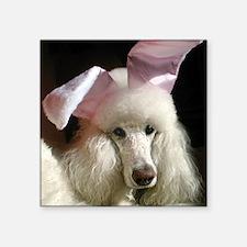 """Hefner poodle Square Sticker 3"""" x 3"""""""