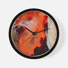 Kamchatka_TMO_ThrowPillow Wall Clock