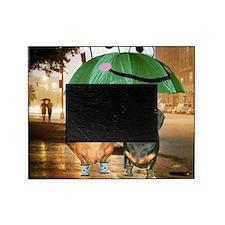 tig lil rain16x16 Picture Frame