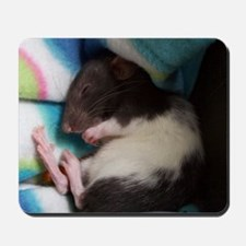 Mitsy Mousepad