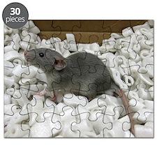 Blair Puzzle