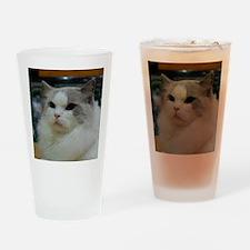 DSC_0212_2 Drinking Glass