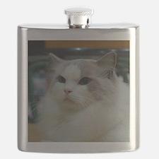 DSC_0212_2 Flask