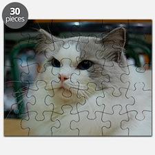 DSC_0212_2 Puzzle