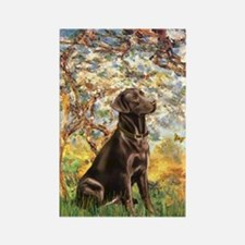 Spring - Chocolate Lab 11 Rectangle Magnet