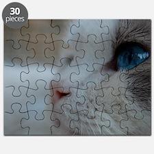 DSC_0074_3 Puzzle
